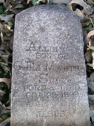 SIMS,, ALLIE W. - Independence County, Arkansas | ALLIE W. SIMS, - Arkansas Gravestone Photos