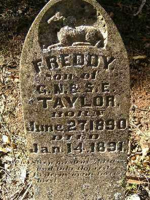 TAYLOR, FREDDY - Independence County, Arkansas | FREDDY TAYLOR - Arkansas Gravestone Photos