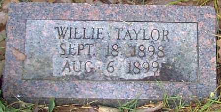 TAYLOR, WILLIE - Independence County, Arkansas | WILLIE TAYLOR - Arkansas Gravestone Photos