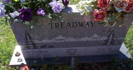 TREADWAY, WOODROW - Independence County, Arkansas | WOODROW TREADWAY - Arkansas Gravestone Photos