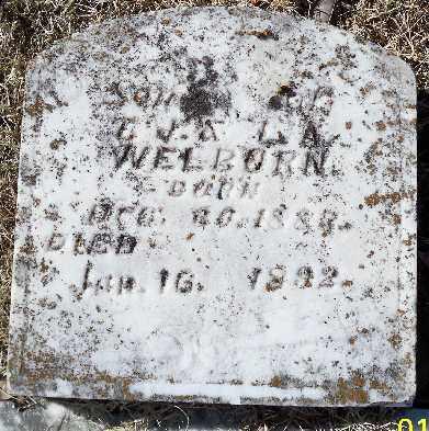 WELBORN, SAMUEL G. - Independence County, Arkansas   SAMUEL G. WELBORN - Arkansas Gravestone Photos