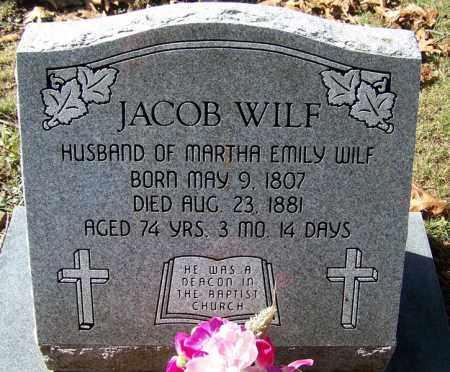 WILF, JACOB - Independence County, Arkansas   JACOB WILF - Arkansas Gravestone Photos