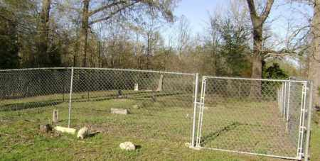 *MCNUTT-PERRIN CEMETERY VIEW,  - Independence County, Arkansas |  *MCNUTT-PERRIN CEMETERY VIEW - Arkansas Gravestone Photos