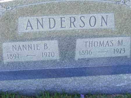 SMITH ANDERSON, NANNIE B. THOMAS B. - Izard County, Arkansas | NANNIE B. THOMAS B. SMITH ANDERSON - Arkansas Gravestone Photos