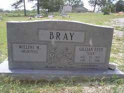 BRAY, GILLIAN REED - Izard County, Arkansas | GILLIAN REED BRAY - Arkansas Gravestone Photos