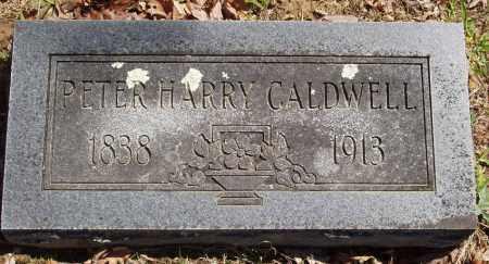 CALDWELL, PETER HARRY - Izard County, Arkansas | PETER HARRY CALDWELL - Arkansas Gravestone Photos