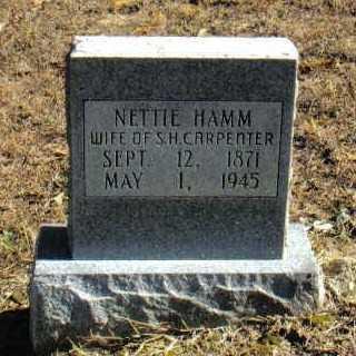 CARPENTER, NETTIE - Izard County, Arkansas   NETTIE CARPENTER - Arkansas Gravestone Photos