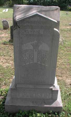 DAVIDSON, MINNIE NAOMI - Izard County, Arkansas | MINNIE NAOMI DAVIDSON - Arkansas Gravestone Photos