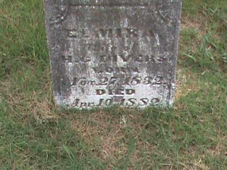 DIVERS, ELMIRA - Izard County, Arkansas | ELMIRA DIVERS - Arkansas Gravestone Photos