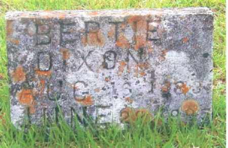 DIXON, BERTIE - Izard County, Arkansas | BERTIE DIXON - Arkansas Gravestone Photos