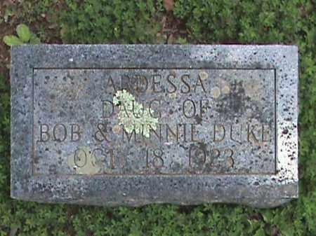 DUKE, ARDESSA - Izard County, Arkansas | ARDESSA DUKE - Arkansas Gravestone Photos