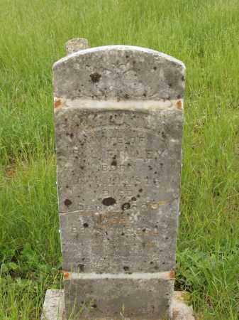 "FINLEY, ARKANSAS ""ARKA"" L - Izard County, Arkansas | ARKANSAS ""ARKA"" L FINLEY - Arkansas Gravestone Photos"