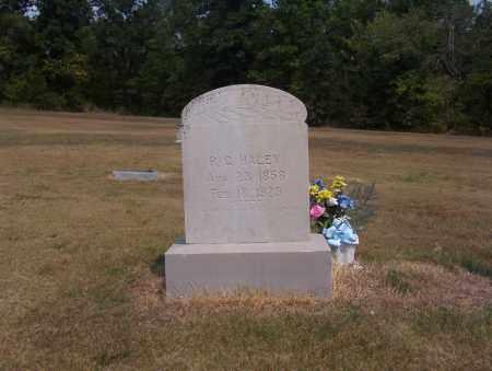 HALEY, RUSSELL - Izard County, Arkansas | RUSSELL HALEY - Arkansas Gravestone Photos