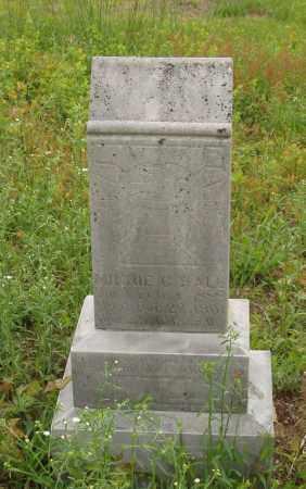 HALL, MINNE C - Izard County, Arkansas | MINNE C HALL - Arkansas Gravestone Photos