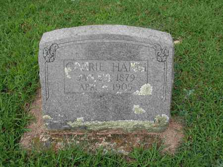 HAMM, CARRIE A. - Izard County, Arkansas | CARRIE A. HAMM - Arkansas Gravestone Photos