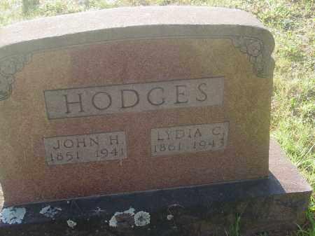HODGES, LYDIA (OBIT) - Izard County, Arkansas | LYDIA (OBIT) HODGES - Arkansas Gravestone Photos