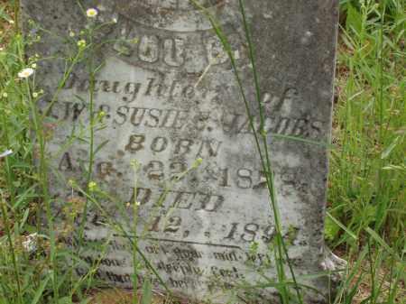 "JACOBS, LATITIA ""LOU"" B - Izard County, Arkansas | LATITIA ""LOU"" B JACOBS - Arkansas Gravestone Photos"