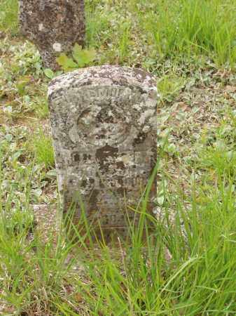 JACOBS, ROXANNA B - Izard County, Arkansas | ROXANNA B JACOBS - Arkansas Gravestone Photos