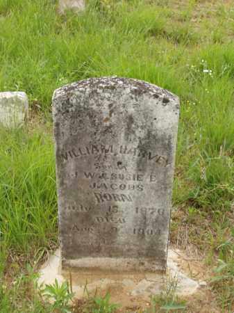 JACOBS, WILLIAM HARVEY - Izard County, Arkansas | WILLIAM HARVEY JACOBS - Arkansas Gravestone Photos