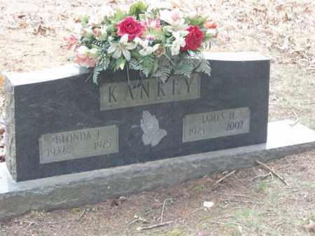 KANKEY, JAMES H - Izard County, Arkansas | JAMES H KANKEY - Arkansas Gravestone Photos