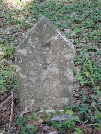 KING, G W - Izard County, Arkansas | G W KING - Arkansas Gravestone Photos