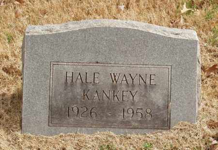 KINKEY, HALE WAYNE - Izard County, Arkansas | HALE WAYNE KINKEY - Arkansas Gravestone Photos