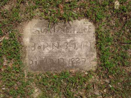 LEE, LAURINE F - Izard County, Arkansas   LAURINE F LEE - Arkansas Gravestone Photos