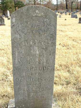 MCSPADDEN, LUCY S. - Izard County, Arkansas   LUCY S. MCSPADDEN - Arkansas Gravestone Photos