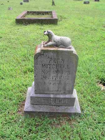 MITCHELL, FERN - Izard County, Arkansas | FERN MITCHELL - Arkansas Gravestone Photos