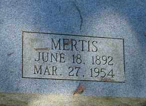 STROUD MYNATT, ANNIE MERTIS - Izard County, Arkansas | ANNIE MERTIS STROUD MYNATT - Arkansas Gravestone Photos