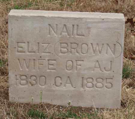 BROWN NAIL, ELIZABETH - Izard County, Arkansas | ELIZABETH BROWN NAIL - Arkansas Gravestone Photos