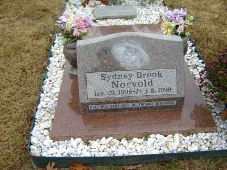NORVOLD, SYDNEY BROOK - Izard County, Arkansas | SYDNEY BROOK NORVOLD - Arkansas Gravestone Photos