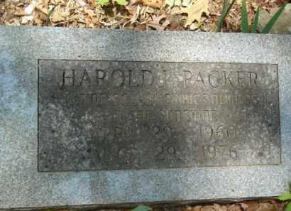 PACKER, HAROLD J. - Izard County, Arkansas | HAROLD J. PACKER - Arkansas Gravestone Photos