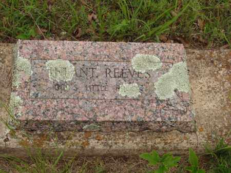 REEVES, INFANT - Izard County, Arkansas | INFANT REEVES - Arkansas Gravestone Photos