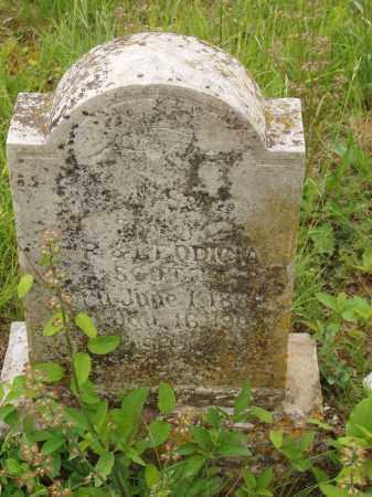 SCOTT, JACKSON - Izard County, Arkansas   JACKSON SCOTT - Arkansas Gravestone Photos