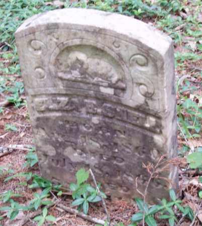 SHELL, ELIZA E - Izard County, Arkansas | ELIZA E SHELL - Arkansas Gravestone Photos