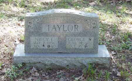 TAYLOR, NIECY E - Izard County, Arkansas | NIECY E TAYLOR - Arkansas Gravestone Photos