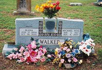 WALKER, MICHAEL NOIL - Izard County, Arkansas   MICHAEL NOIL WALKER - Arkansas Gravestone Photos