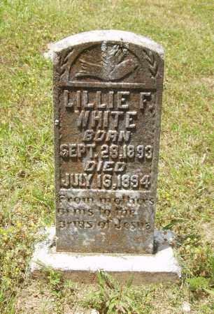 WHITE, LILLIE F - Izard County, Arkansas | LILLIE F WHITE - Arkansas Gravestone Photos