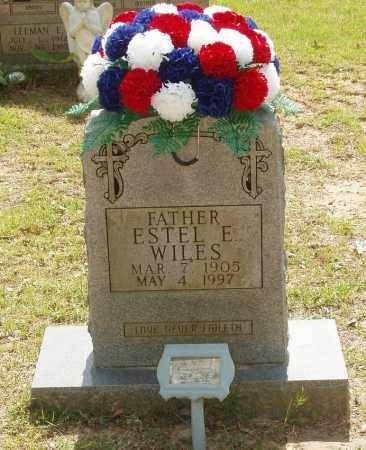 WILES, ESTEL E - Izard County, Arkansas   ESTEL E WILES - Arkansas Gravestone Photos