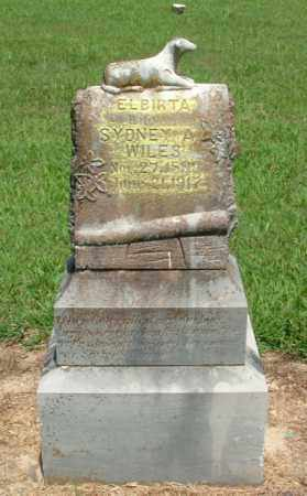 WILES, ELBIRTA - Izard County, Arkansas | ELBIRTA WILES - Arkansas Gravestone Photos