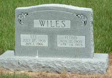 FRIZZELL WILES, ELYDDIA LEE - Izard County, Arkansas | ELYDDIA LEE FRIZZELL WILES - Arkansas Gravestone Photos