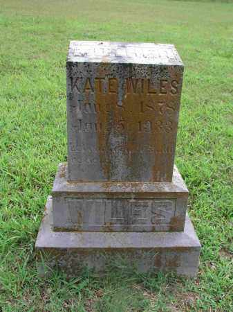 MILLER WILES, MARIA CATHERINE - Izard County, Arkansas | MARIA CATHERINE MILLER WILES - Arkansas Gravestone Photos