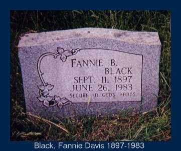 BLACK, FANNIE BEATRICE - Izard County, Arkansas | FANNIE BEATRICE BLACK - Arkansas Gravestone Photos