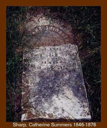 SHARP, LAVINA V. CATHERINE - Izard County, Arkansas | LAVINA V. CATHERINE SHARP - Arkansas Gravestone Photos