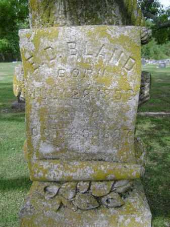 BLAND, E D - Jackson County, Arkansas | E D BLAND - Arkansas Gravestone Photos