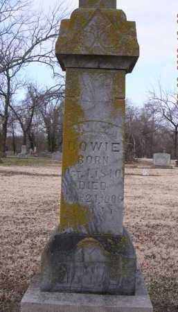 BOWIE, CANIZA - Jackson County, Arkansas | CANIZA BOWIE - Arkansas Gravestone Photos