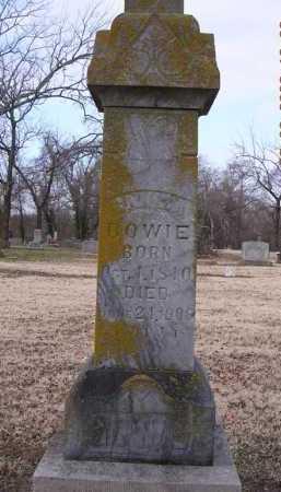 REEVES BOWIE, CANIZA - Jackson County, Arkansas | CANIZA REEVES BOWIE - Arkansas Gravestone Photos