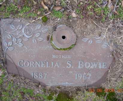 BOWIE, ELEANOR CORNELIA - Jackson County, Arkansas | ELEANOR CORNELIA BOWIE - Arkansas Gravestone Photos