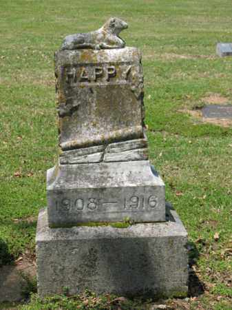 BOWIE, THEODORA HAPPY - Jackson County, Arkansas | THEODORA HAPPY BOWIE - Arkansas Gravestone Photos